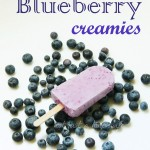 Blueberry Yogurt Bars