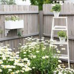 Transform your Home's Backyard