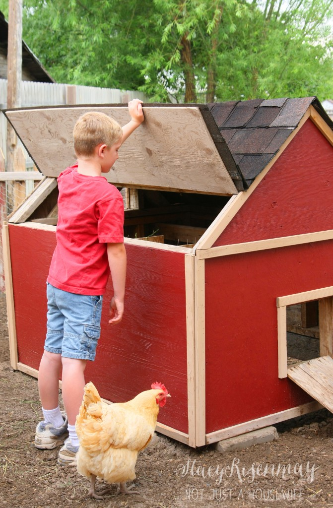 Chicken coop with roof that lifts up