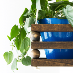 15 DIY Planters You Can Make in a Day!