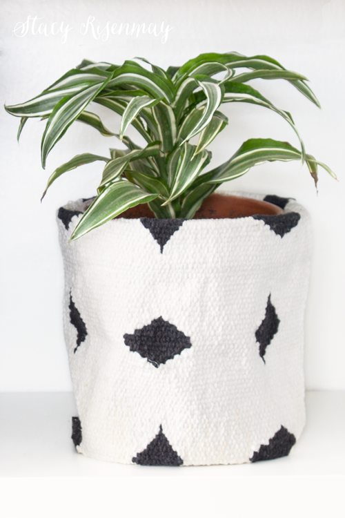 15 easy to care for houseplants! dracaena-plant